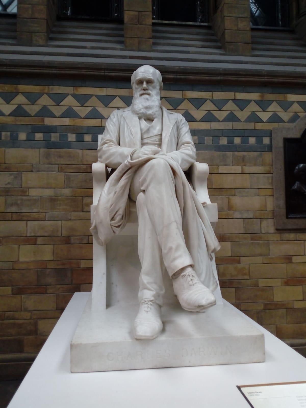 escultura que representa el pare de la teoria de l'evolució Charles Darwin